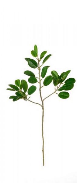DEKO-Ficus Blattzweig-230364-1