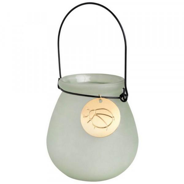 Glaswindlicht-Glaswindlicht Käfer,outdoor-230055_1-1
